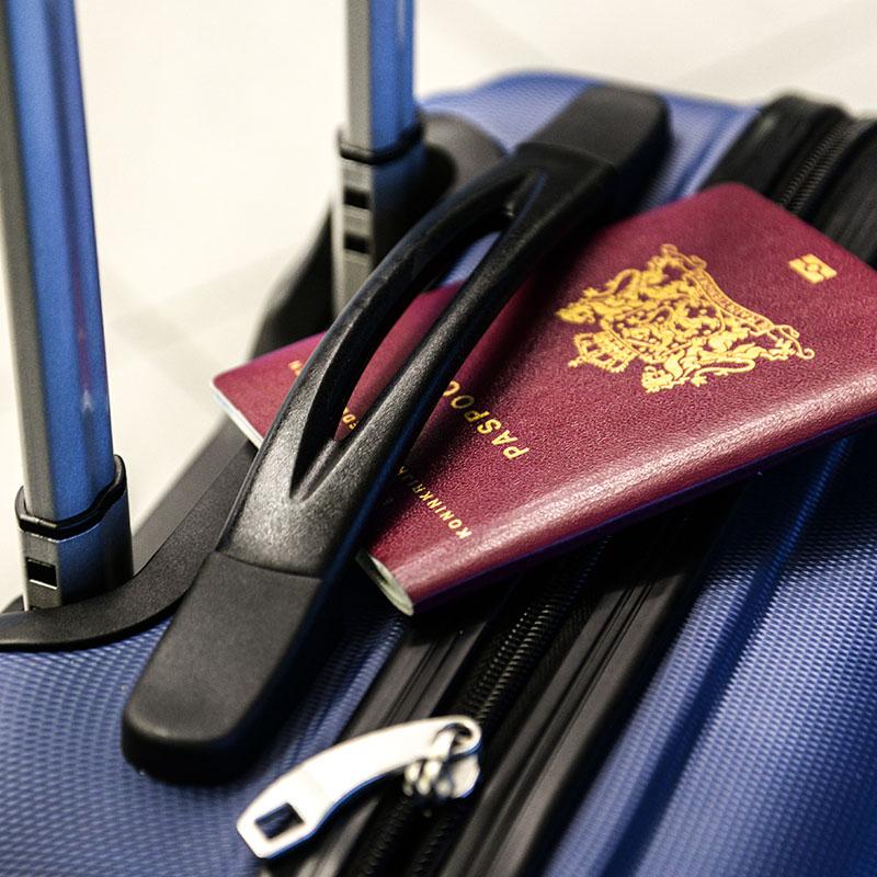 Passport suitcase